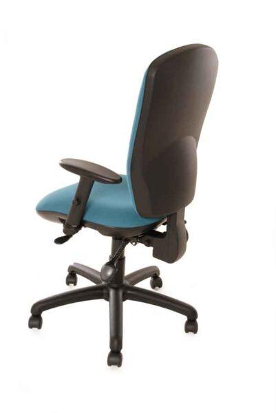 Coccyx Chair